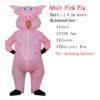 Adult-Pink Pig